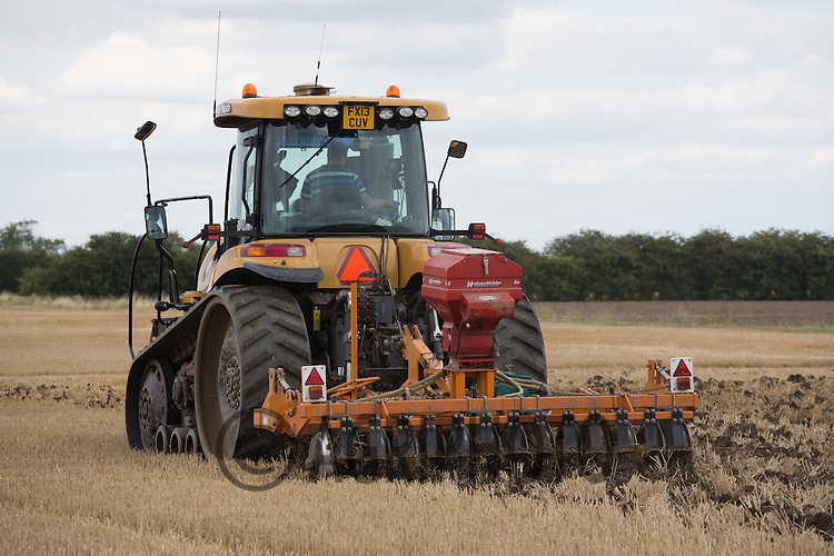 Drilling oilseed rape in the Lincolnshire Fens<br /> Picture Tim Scrivener 07850 303986<br /> &hellip;.Covering agriculture in the UK&hellip;.