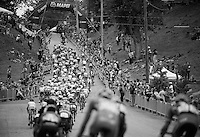 U23 peloton storming up the cobbles of 23rd Street for yet another ascent.<br /> <br /> U23 Road Race<br /> UCI Road World Championships Richmond 2015 / USA