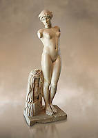 "Roman marble statue of the Esquiline Venus or Aphrodite dated to the 1st cent. It was found in 1874 in Piazza Dante on the Esquiline Hill in Rome, probably part of the site of the Horti Lamiani, one of the imperial gardens, rich archaeological sources of classical sculpture. The Esquiline Venus is an example of the Pasitelean ""eclectic"" style of the Neo-Attic school. It combines elements from a variety of other previous schools - a Praxitelean idea of the nude female form; a face, muscular torso, and small high breasts in the fifth-century BC severe style; and pressed-together thighs typical of Hellenistic sculptures. Capitoline Museums, Rome"