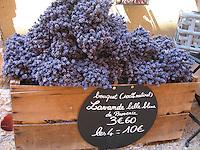 Lavender bouquets, Provence