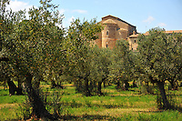 Abruzzo, Abbazia di San Giovanni in Venere, complesso monastico del XIII secolo, basilica in stile cistercense.<br /> Abruzzo, Abbey of San Giovanni in Venere, monastery of the thirteenth century, Cistercian style.