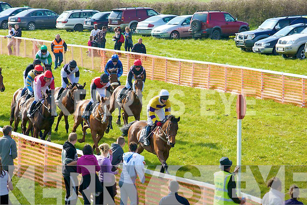 Their off. At the North Kerry Harriers Point to Point Races on Saturday in Ballybunion.................................................................. ........