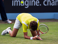 19-06-13, Netherlands, Rosmalen,  Autotron, Tennis, Topshelf Open 2013, , Robin Haase fals to the grass<br /> Photo: Henk Koster