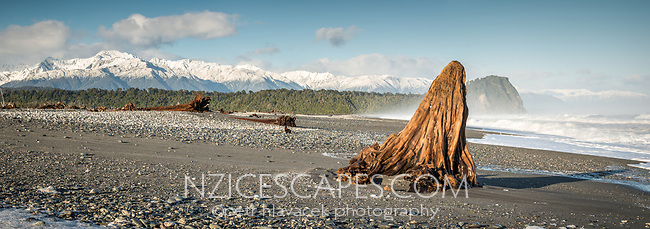 Driftwood on remote and wild Gillespies Beach, Westland Tai Poutini National Park, UNESCO World Heritage Area, West Coast, New Zealand, NZ