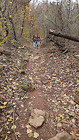 NWA Democrat-Gazette/FLIP PUTTHOFF <br /> The six-mile round-trip Goat Trail hike is rocky    Nov. 18 2016     in spots. Much of the route is along road remnant.