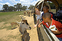 Kids enjoy Global Wildlife Center in Folsom