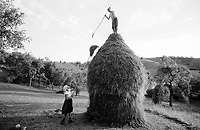 ROMANIA / Maramures / Valeni / August 2003..Maria Nemes and her daughter finish one of the last haystacks for the season. A family will typically make between 20 and 40 haystacks each summer depending on how much land they own. ..© Davin Ellicson / Anzenberger..