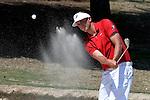 2015 M DII Golf Individual