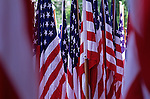 American flag display at the Capitol building in Olympia Washington State USA