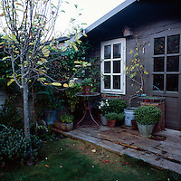 A timber garden building that doubles as a studio and a potting shed, Plants in pots are arranged on the the wooden deck outside.