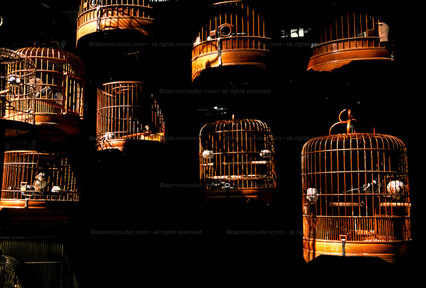Bird cages at Yuen Po Bird Park in Hong Kong SAR, China. December 2005