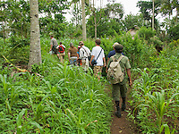 Herpetologist Hinrich Kaiser leads students on a hike on Atauro Island, Timor-Leste (East Timor), through a corn field planted by local residents.