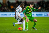 Mo Barrow of Swansea ( left ) in action during the Barclays Premier League match between Swansea City and Sunderland played at the Liberty Stadium, Swansea  on  January the 13th 2016