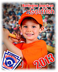 2013 Burlington American Goldfish