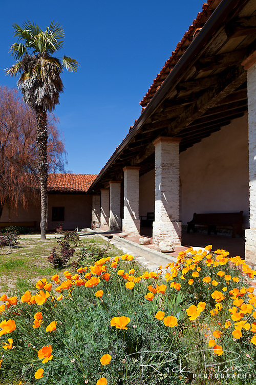 "California poppies bloom on the patio at Mission San Antonio de Padua. Mission San Antonio de Padua sits within the ""Valley of the Oaks"" in Monterey County near the town of Jolon. The mission was founded on July 14, 1771 by Father Junipero Serra and was the third mission in Alta California. Mission San Antonio de Padua is located on eighty pristine acres on what was once the Milpitas Unit of the Hearst Ranch and is today surrounded by the Army's Fort Hunter Ligget Military Reservation."
