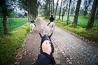 Horse riding at Hacienda Zuleta, Imbabura, Ecuador, South America