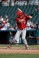 Springfield Cardinals Scott Hurst (7) bats during a Texas League game against the Frisco RoughRiders on May 5, 2019 at Dr Pepper Ballpark in Frisco, Texas.  (Mike Augustin/Four Seam Images)