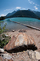 Log Boom on Diablo Lake, North Cascades National Park, Washington, US