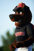 Batavia Muckdogs mascot Homer during a game against the State College Spikes on June 24, 2016 at Dwyer Stadium in Batavia, New York.  State College defeated Batavia 10-3.  (Mike Janes/Four Seam Images)