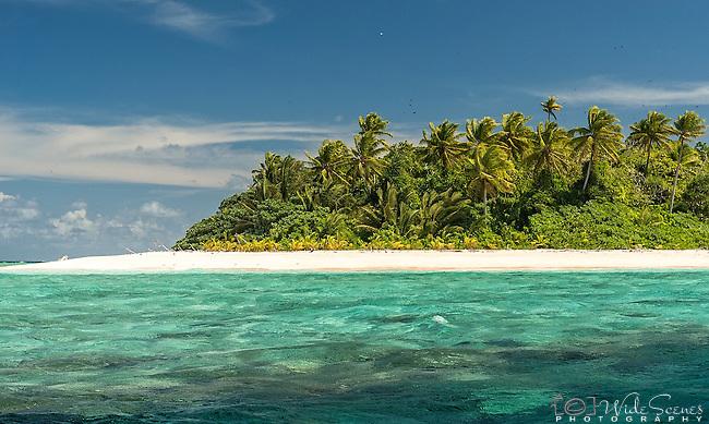 Atoll island in the Funafuti Marine Conservation Area, Tuvalu