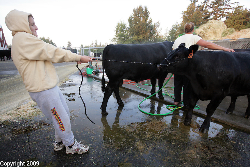 Tarisa Toth, 13, of Fidalgo, 6am, NW Washington Fair. August 18, 2009 PHOTOS BY MERYL SCHENKER
