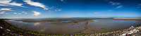 San Francisco Bay at low tide with the rocky, mossy,  shoreline leading to mudflats under a blue sky with scattered clouds.  Multiple images combined into a wide panoramic.