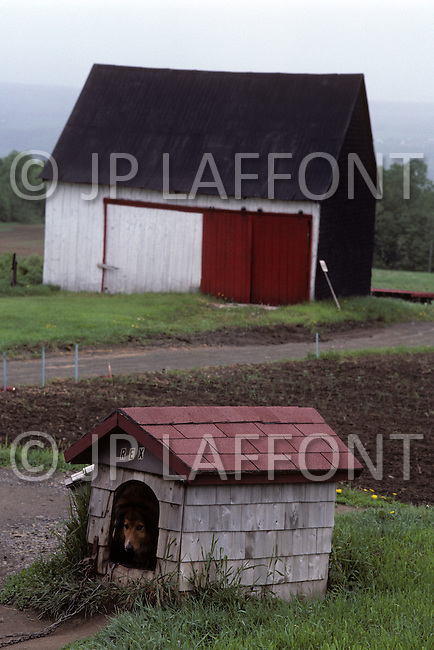 Ile D'Orleans, Quebec City Area, Canada, June 8, 1984. Detail of a typical old farm.
