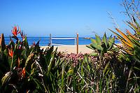 Beach Volleyball Along The Coast