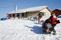 Volunteer helps guide sled dog team to dog park @ Ruby Chkpt 2006 Iditarod Ruby Alaska Interior Winter