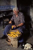 Europe/France/Midi-Pyrénées/46/Lot/Haut-Quercy/Salviac: Egrainage du maïs pour l'alimentation animale [Non destiné à un usage publicitaire - Not intended for an advertising use]<br /> PHOTO D'ARCHIVES // ARCHIVAL IMAGES<br /> FRANCE 1980