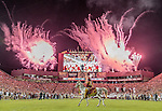 Florida State mascot Osceola riding Renegade watch as the Seminoles take the field before an NCAA college football game against Clemson in Tallahassee, Fla., Saturday, Oct. 29, 2016. (AP Photo/Mark Wallheiser)
