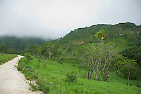 Dirt road on Mount Manucoco, Atauro Island, Timor-Leste (East Timor)