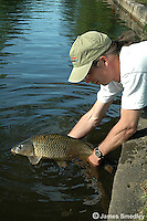Man holding carp caught when fishing