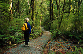 A tramper walking on the track to the Humboldt falls in the Hollyford Valley, Fiordland National Park, South Island, New Zealand.