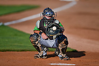 Casey Schroeder (4) of the Great Falls Voyagers warms up the starting pitcher before the game against the Ogden Raptors in Pioneer League action at Lindquist Field on August 16, 2016 in Ogden, Utah. Ogden defeated Great Falls 2-1. (Stephen Smith/Four Seam Images)