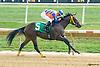 Brassy Ben winning at Delaware Park on 9/29/15