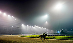 September 1, 2020: The morning fog and mist start to lift over a mostly empty racetrack as horses prepare for the 2020 Kentucky Derby and Kentucky Oaks at Churchill Downs in Louisville, Kentucky. The race is being run without fans due to the coronavirus pandemic that has gripped the world and nation for much of the year. Scott Serio/Eclipse Sportswire/CSM