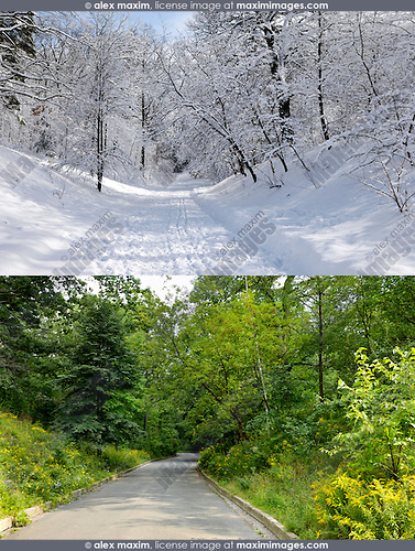 Two photographs of the same place in winter and summer. High Park, Toronto, Ontario, Canada.