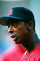 Willie McGee of the St.Louis Cardinals during a game at Dodger Stadium in Los Angeles, California during the 1997 season.(Larry Goren/Four Seam Images)