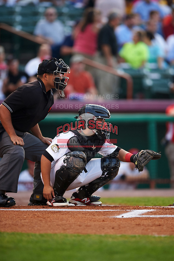 Tri-City ValleyCats catcher Richard Gonzalez (11) waits for a pitch in front of umpire Jose Matamoros during a game against the Brooklyn Cyclones on September 1, 2015 at Joseph L. Bruno Stadium in Troy, New York.  Tri-City defeated Brooklyn 5-4.  (Mike Janes/Four Seam Images)