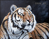 Sandi, REALISTIC ANIMALS, REALISTISCHE TIERE, ANIMALES REALISTICOS, paintings+++++,USSN90,#a#, EVERYDAY ,tiger,tigers, ,puzzles