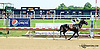 Steel Curtin winning at Delaware Park racetrack on 6/23/14