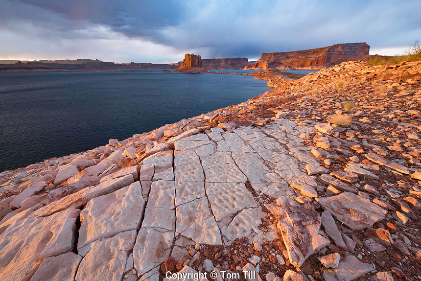 Tesellated pavemnet rocks and Lake Powell Buttea, Glen Canyon National Recreation Area, Utah
