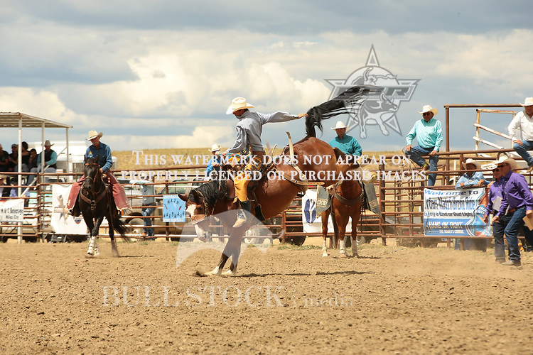 Taylen Nelson ride Chancy Kittson's 25 for 63 points during the ABHR Jordan Bronc Match. Photo by Andy Watson