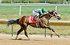 Exclusive Warrior winning at Delaware Park on 7/16/12