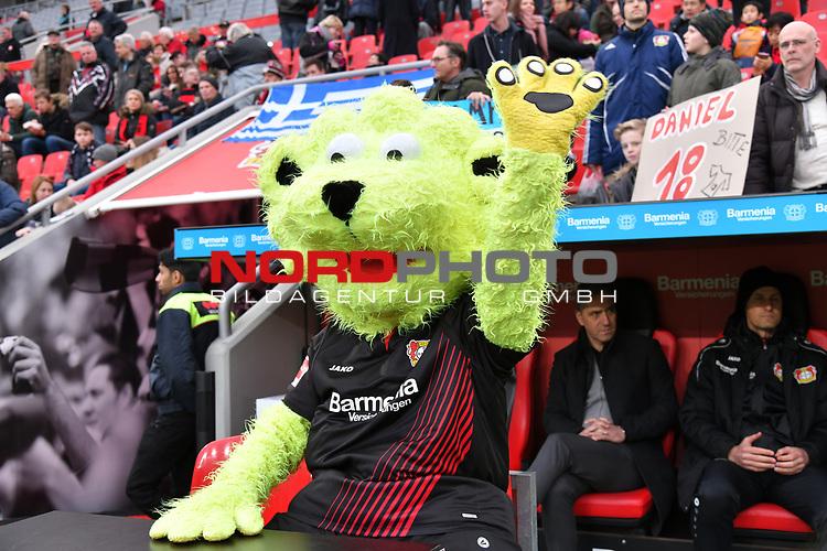 28.01.2018, BayArena, Leverkusen , GER, 1.FBL., Bayer 04 Leverkusen vs. 1. FSV Mainz 05<br /> im Bild / picture shows: <br /> Bayer Maskottchen &bdquo;Brain the Lion&ldquo;<br /> <br /> <br /> Foto &copy; nordphoto / Meuter