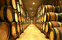 Wooden barrels with aging wine in the cellar of Guigal in Ampuis.  Domaine E Guigal, Ampuis, Cote Rotie, Rhone, France, Europe