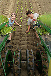 The American Farm are images/photographs from an ongoing documentary of sustainable farming practices in New York State.