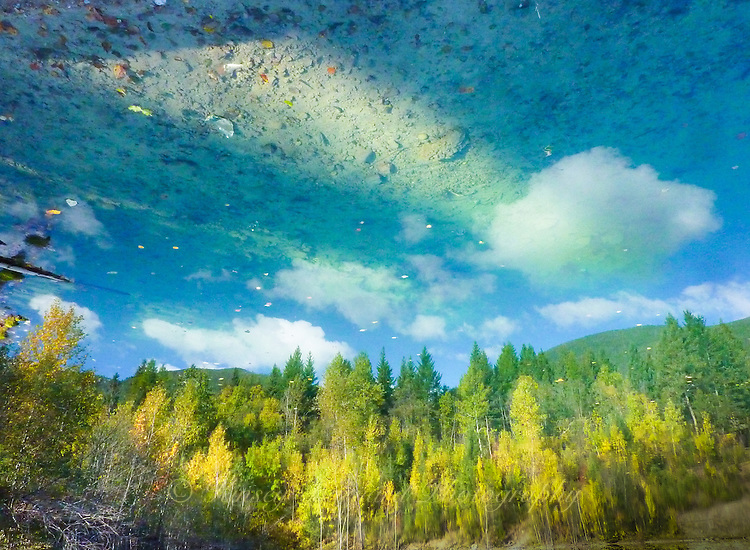 &quot;ROCKY BOTTOM SKY&quot;<br />