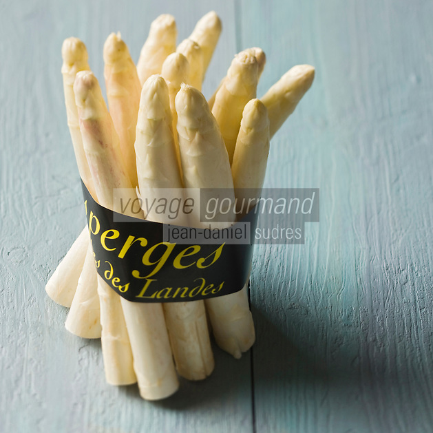 Europe/France:Aquitaine/40/Landes: Asperges des sables  des Landes - Stylisme : Valérie LHOMME // France, Landes, asparagus sands of the Landes, PGI Protected Geographical Indication,